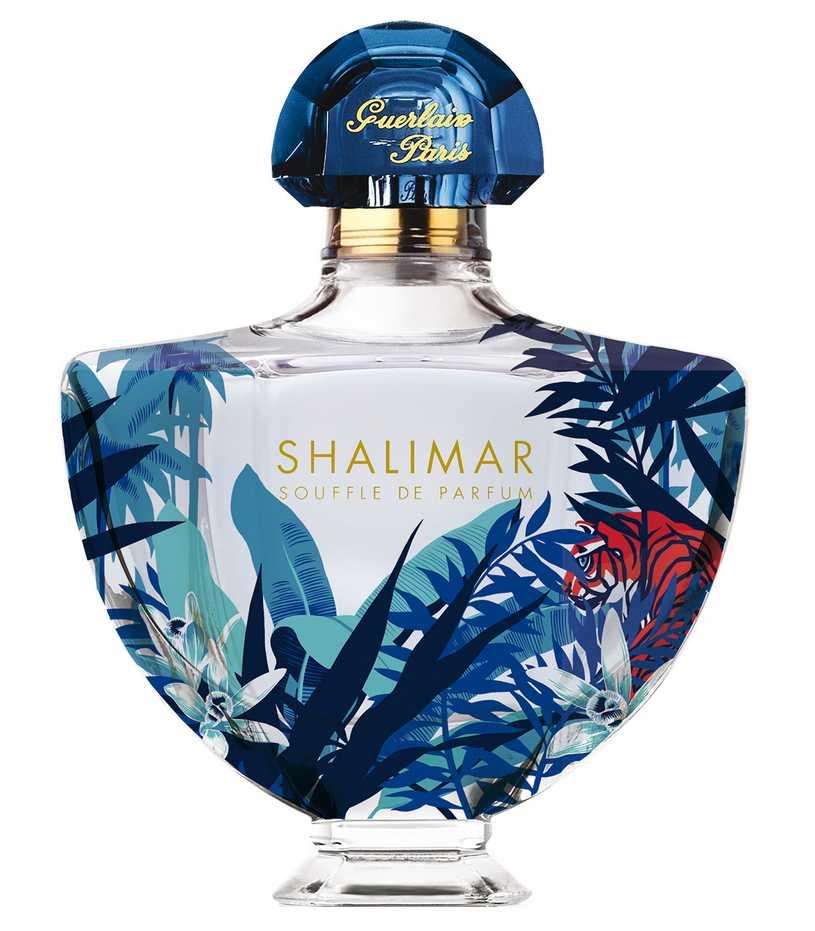 Hfc парфюм название духов